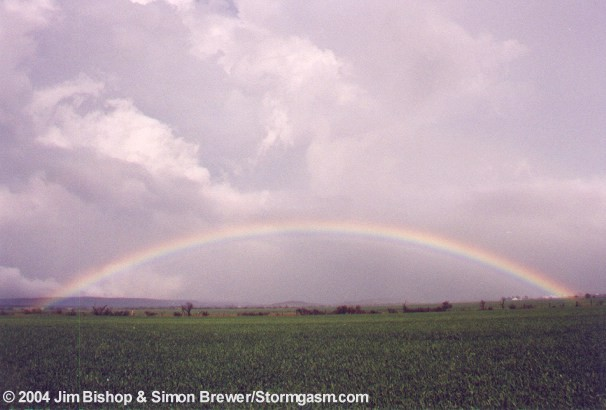 rainbownt1