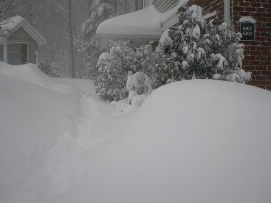 Front walkway to my front door.  It's under there somewhere..