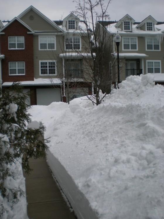 My front walkway