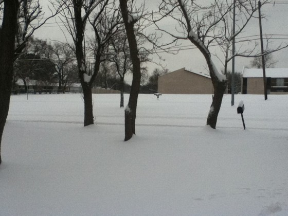 Snow in Mesquite, TX Friday morning (2/4).  Photo taken by Meggan Figueroa not long before a heavy snow band moved through.